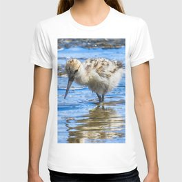 Black Necked Stilt Chick T-shirt