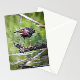 Green Heron in the channel Stationery Cards
