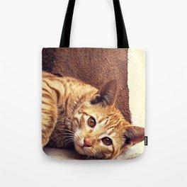 Cat roux Tote Bag