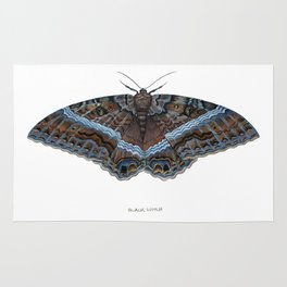 Black Witch Moth Rug
