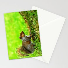 Grey squirrel Stationery Cards