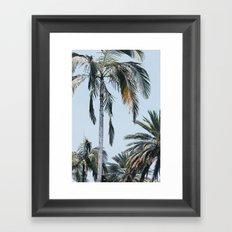 Vintage Palm trees Framed Art Print