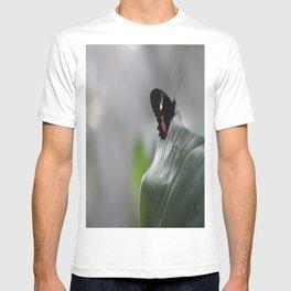 Butterfly Bokeh  T-shirt