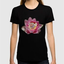 Fairy Lily T-shirt