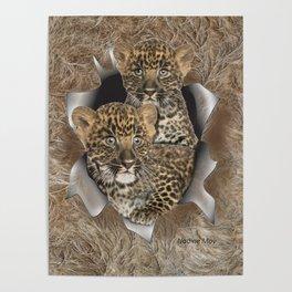Leopard Cubs Poster