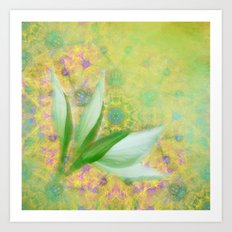 Bauhinia buds against textured green background Art Print