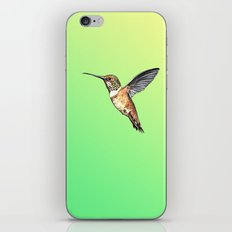 flying hummingbird watercolor sketch iPhone & iPod Skin