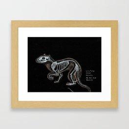 Weasel Skeleton Framed Art Print
