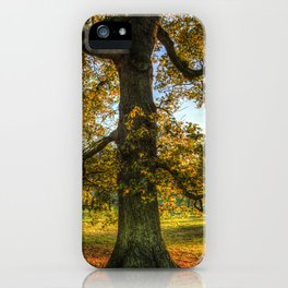 Autumn in Greenwich Park London iPhone Case