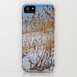 Divergent Fate iPhone Case