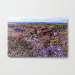 Colorful coastal flowers Metal Print