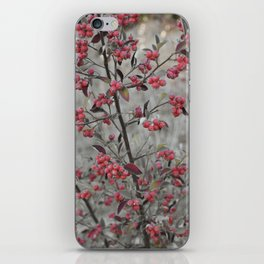 Red Wild Berries in Oakland iPhone Skin