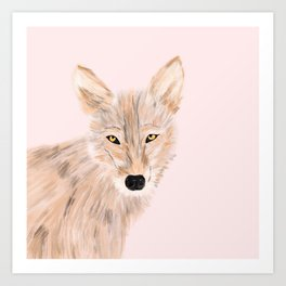 Indian wolf Art Print