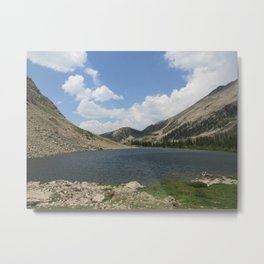 From the North Metal Print