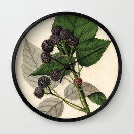Vintage Painting of Blackberries Wall Clock