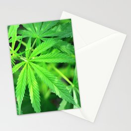 Marijuana plant Stationery Cards