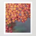 Floral by annestaub