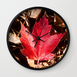 Maple Leaf Photography Print Wall Clock