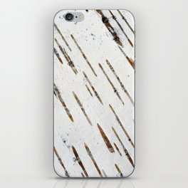 Birch-bark iPhone Skin