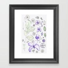 Violet Watercolor Framed Art Print