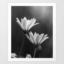 In My Season (Black and White) Art Print