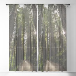 Redwoods Make Me Smile - Nature Photography Sheer Curtain
