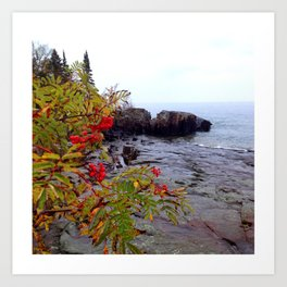 Rainy day color on the North Shore Art Print