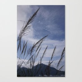 Swaying In The Wind Canvas Print
