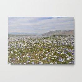 Lush Meadow Metal Print