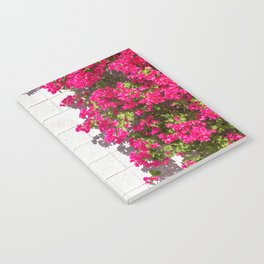 Bougainvilleas and White Brick Wall in Palm Springs, California Notebook