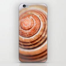 Snail Shell iPhone & iPod Skin