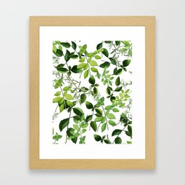 I Never Promised You an Herb Garden Framed Art Print