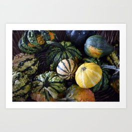 Gourds Art Print