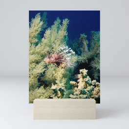 lionfish with soft coral Mini Art Print