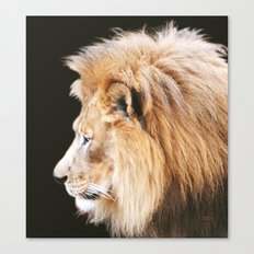 Still King Canvas Print