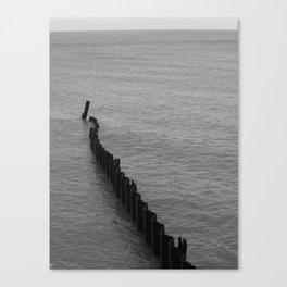Lakeshore Study Canvas Print