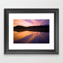 Seek Serenity: A Swimming Duck at Dawn Framed Art Print