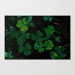 Nature's Candy Canvas Print