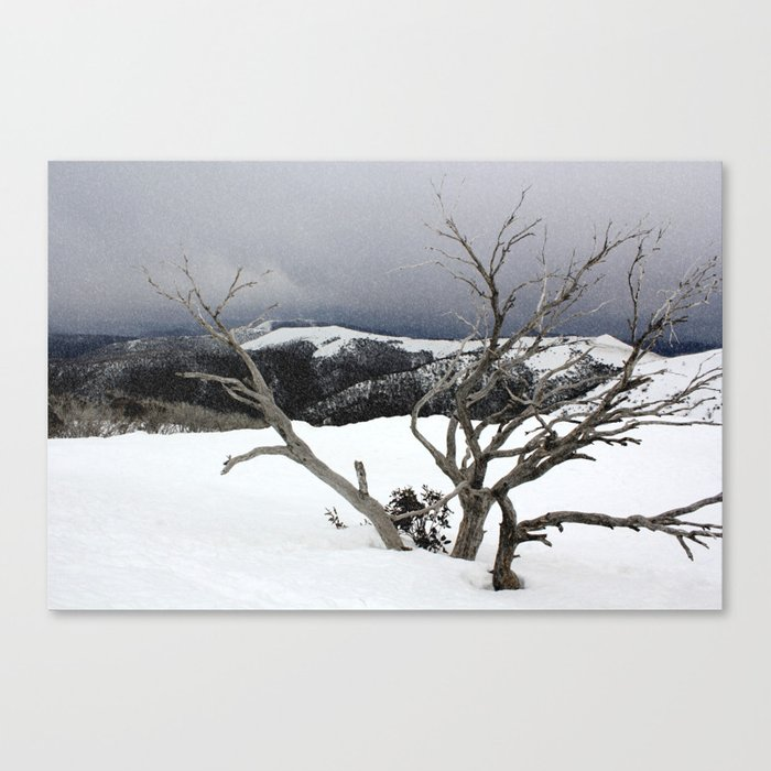 Snowstorm on the Mountain Canvas Print