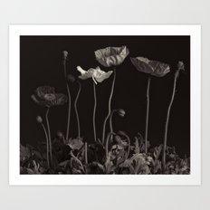 Beddy-bye Art Print