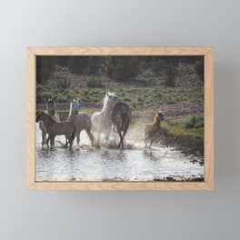 Splashing About At The Waterhole Framed Mini Art Print