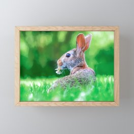 Cute Fluffy Bunny Framed Mini Art Print