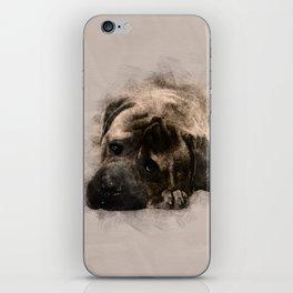 Bullmastiff Puppy Sketch iPhone Skin