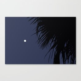 Palm Tree and the Moon Canvas Print