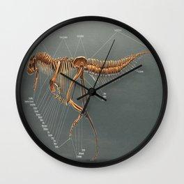 Carnotaurus Skeleton Study Wall Clock
