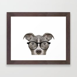 Pit bull with glasses Dog illustration original painting print Framed Art Print