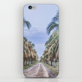 Costa Rican Palms iPhone Skin