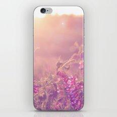World Sun iPhone & iPod Skin