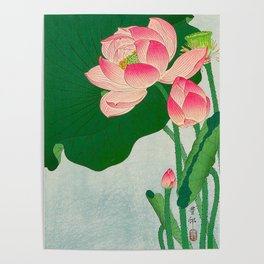 Ohara Koson Flowering Lotus 1930s Japanese Woodblock Print Vintage Historical Japanese Art Poster