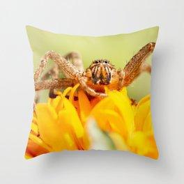 Huntsman Spider Throw Pillow